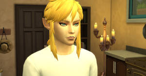 Link Sim - Sims 4 Creation GIF - By Simdrew199