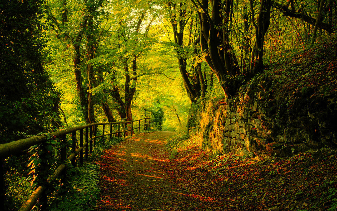 Autumn Wallpaper by SvenMueller