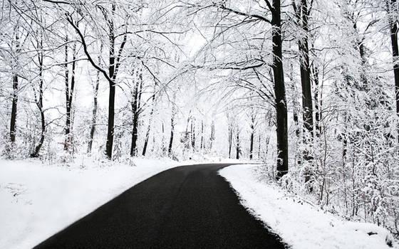 Winter Wallpaper by SvenMueller