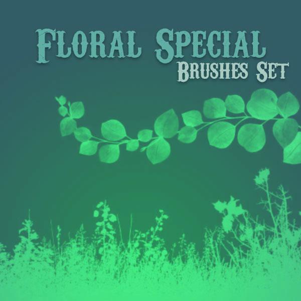 Floral Special by solenero73