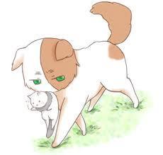 Half-Cat!England X Reader by Shadowfollowed on DeviantArt