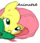 Fluttershy Animated Color