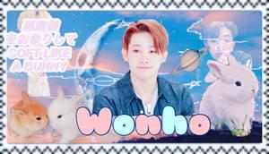 Wonho stamp [animated]