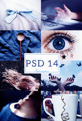 PSD 14 by Tomsophie by tomsophie