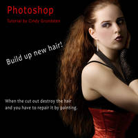 Tutorial Paint new hair by CindysArt