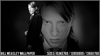 Bill Weasley by Art-of-Illusion
