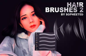 Hair brushes 2 by sopheeted