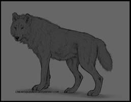 Tundra Wolf FREE Lineart by LeoNoy