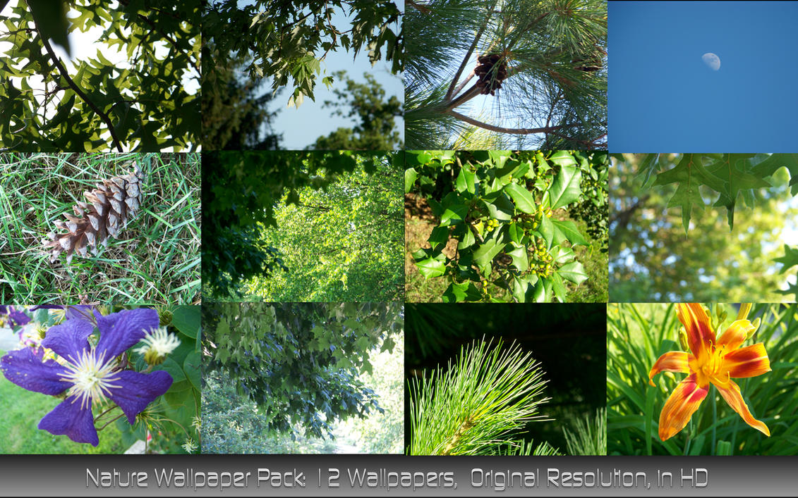 Nature Wallpaper Pack Nature Wallpaper Pack by