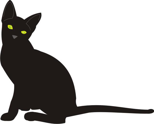 Cat 16 by Gandalf67