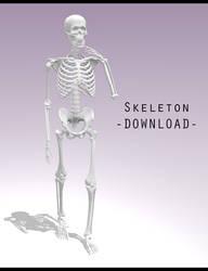 Skeleton [ DOWNLOAD ] by PeachMilk3D