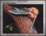 Club Favourite - January 2013 by WingedSonar