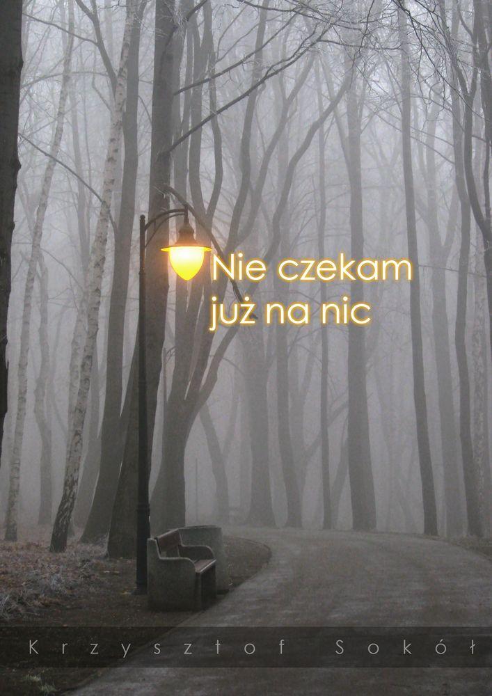KSokol Nie czekam juz na nic by KrzysztofSokol