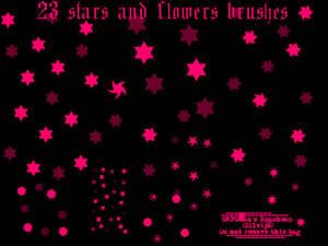 Stars and flower brushes
