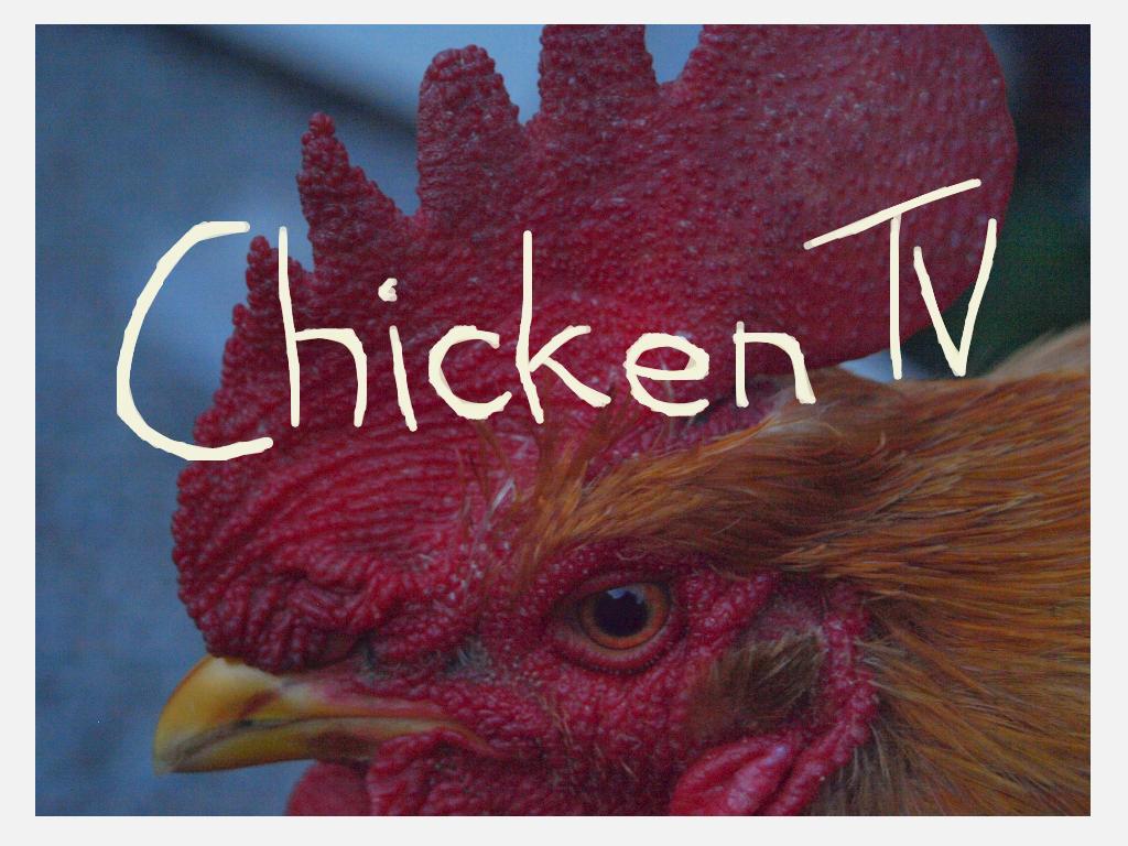 Chicken TV by SusuSketches