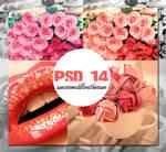 PSD 14