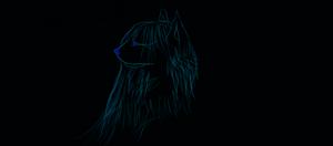 Random Wolf Draw LOL