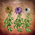 Fairy Flowers by oldhippieart