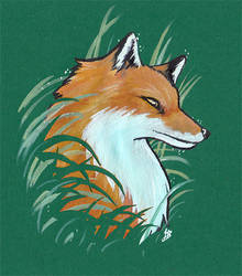 Fox by HerrMagermilch