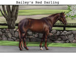 Bailey's Red Darling
