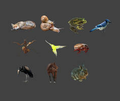 Animals PNG pack 1 by Dafne-1337art