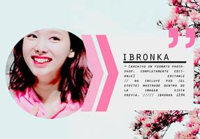 plantilla / template .psd #014 by ibronka