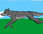 Wolf run cycle by Kenisya