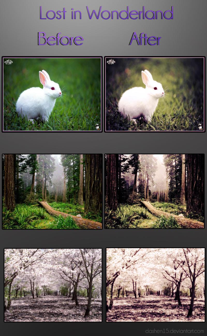 Lost in Wonderland by dashen15