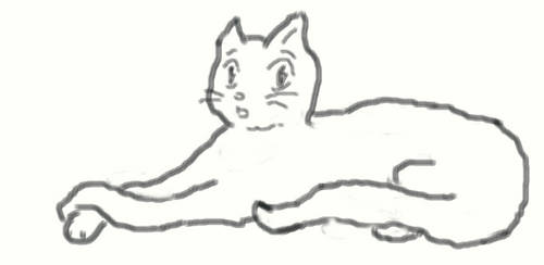 Startled Cat Doodle