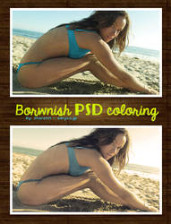 Brownish PSD coloring 05 by Sharah11