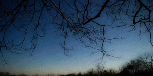(c) Winter's Creeping Edge