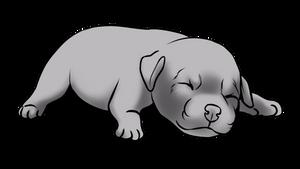 Newborn Pup Lines 2 - F2U