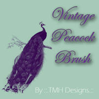 Vintage Peacock Brush