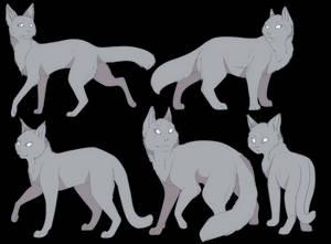 P2U Cat Base Set