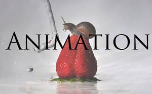 Fuse Animation