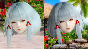 [DOA5LR] [DL] SHIRAGIKU - face and hair NO body