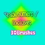 Pack de 3O brushes