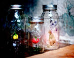 Jars Of Roses And Added Fairy