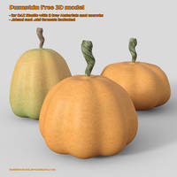 Pumpkin Free 3D model