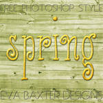 EVA BAXTER DESIGNS - SPRING PHOTOSHOP STYLE
