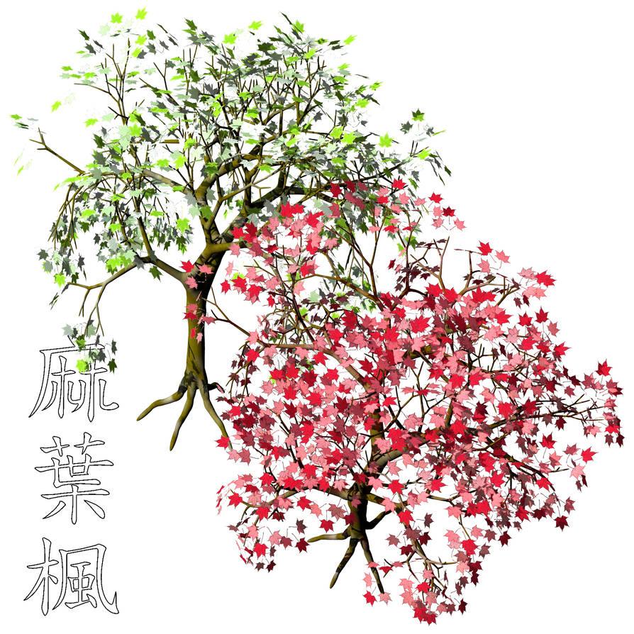 Asanohakaede Acer Argutum Psd By Kanji Hanzi Centerrr On Deviantart