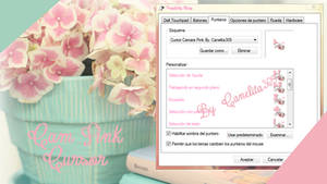 Cursor Camara Pink