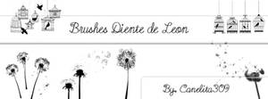 Brushes Diente de Leon By Canelita309
