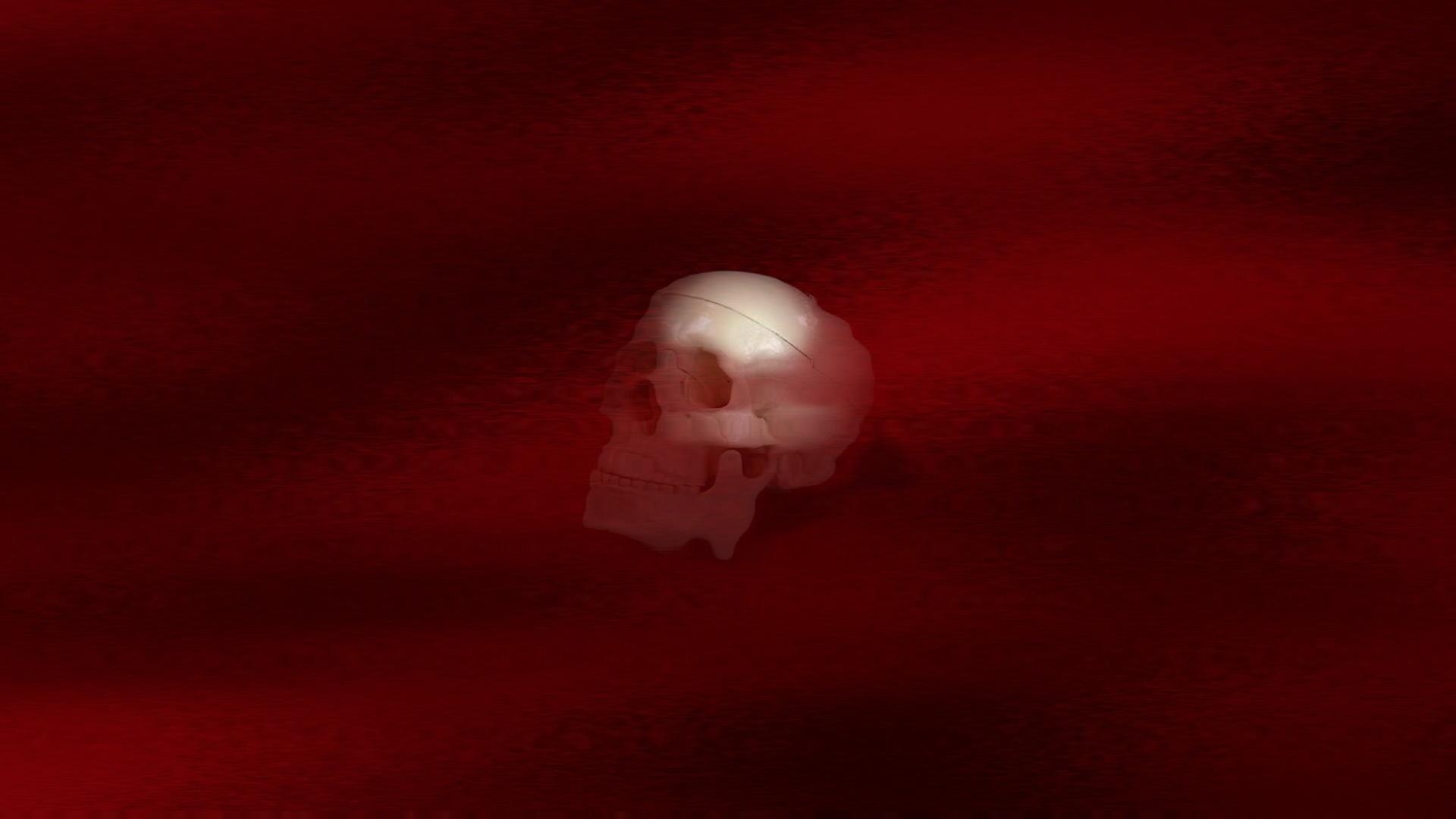skull wallpaper for windows 7 - photo #26