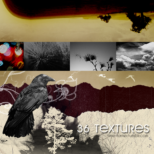 http://fc01.deviantart.net/fs71/i/2011/103/1/c/texture_pack_by_the_time_turner-d3dx05p.png