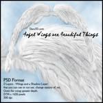 Angel Wings r Beautiful Things