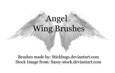 angel wing brushes.