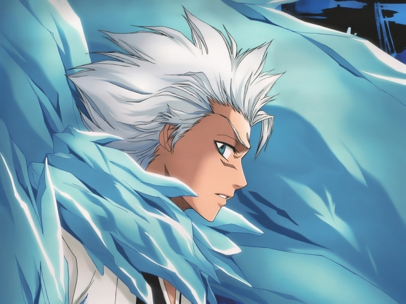 How old is Hitsugaya Toshiro