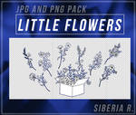 Little Flowers Pack - JPG AND PNG.