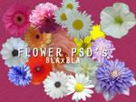 Flower PSD's